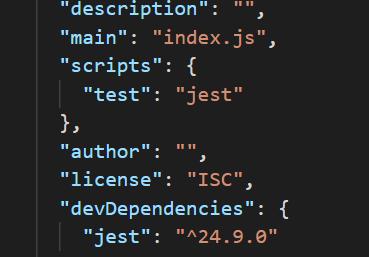 כך נראה קובץ ה-package.json כרגע.
